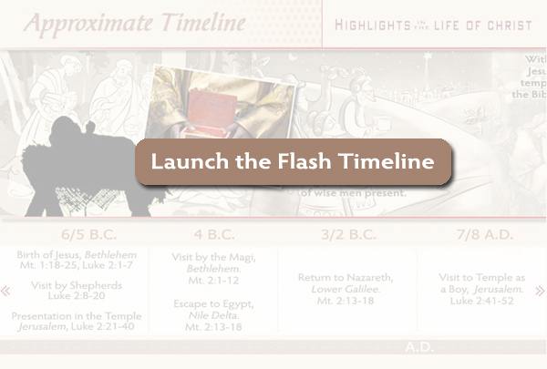 Launch the Flash Timeline
